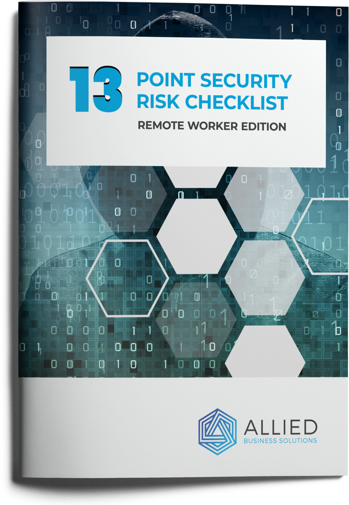 Cover of 13 point security risk checklist